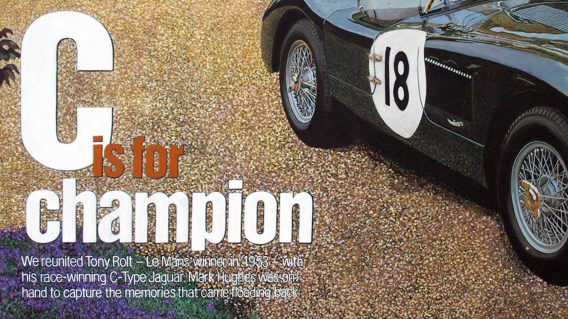 Photorealist painting - C is for Champion - Detail 1