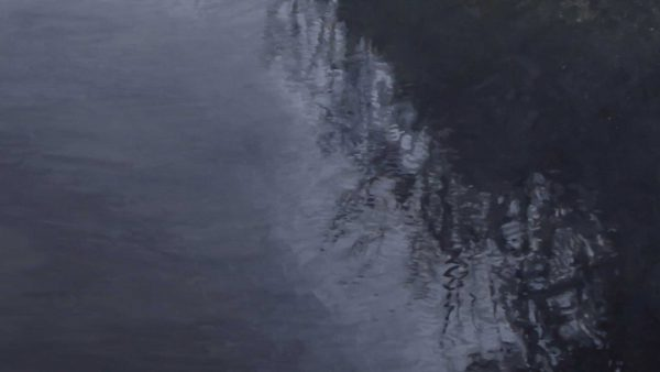 Photorealist painting - Fog at Yarra Glen - Detail 2